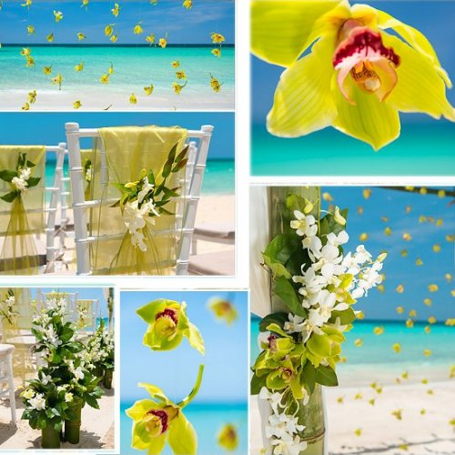 Is a Tropical Destination Wedding Right For You
