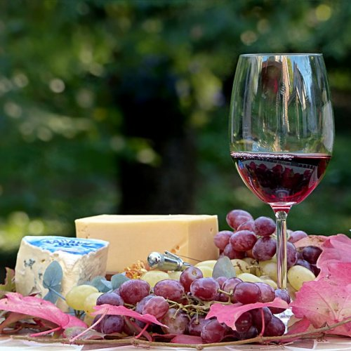 Wine And Cheese Tasting Bridal Shower Theme Ideas