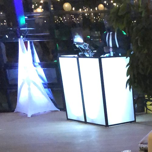 DJ & Animation From Select Events