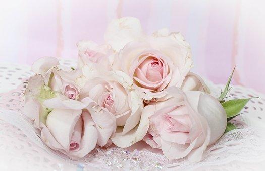 Whimsical Garden Roses