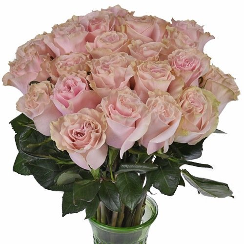 Pink Mondial Roses Flower Bouquet