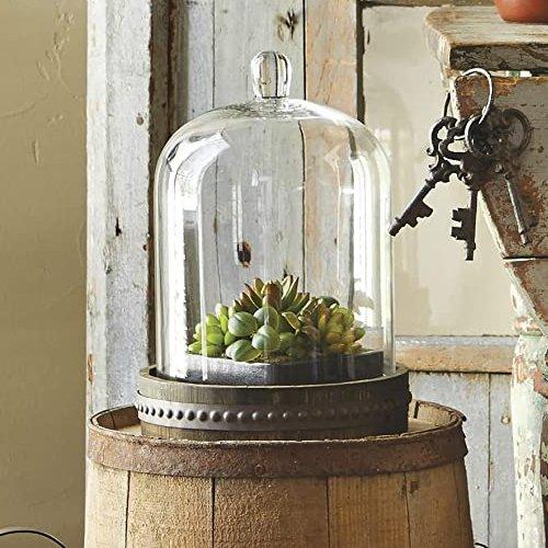 Antique Bell Jar Dome Wedding Centerpieces