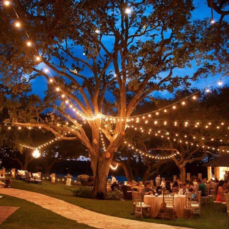 Outdoor Backyard String Lights Wedding Decor