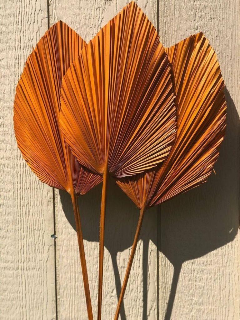 Terracotta Dried Palm Leaves Bohemian Fall Wedding Decor