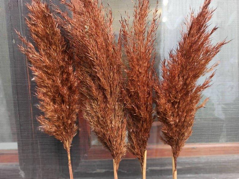 Terracotta Pampas Grass Bohemian Fall Wedding Decor