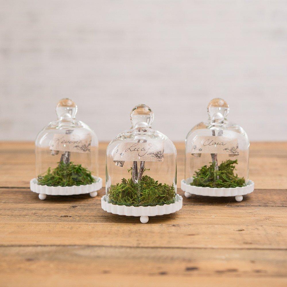 Mini Glass Bell Jars with white base all-white-wedding-decor